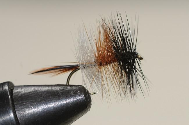 Fliege - Trockenfliege